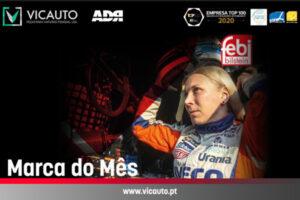 Check-up Media Vicauto febi